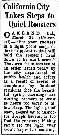 The Milwaukee Sentinel report on noise pollution created by roosters